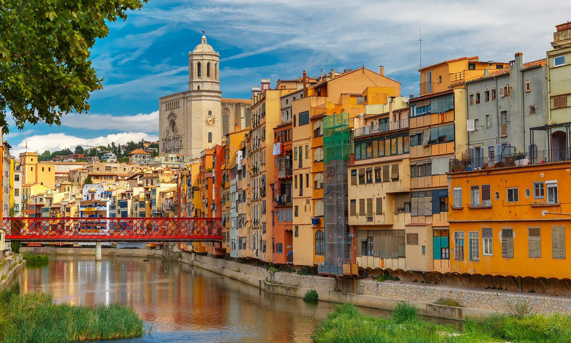 Blog Apialia Girona
